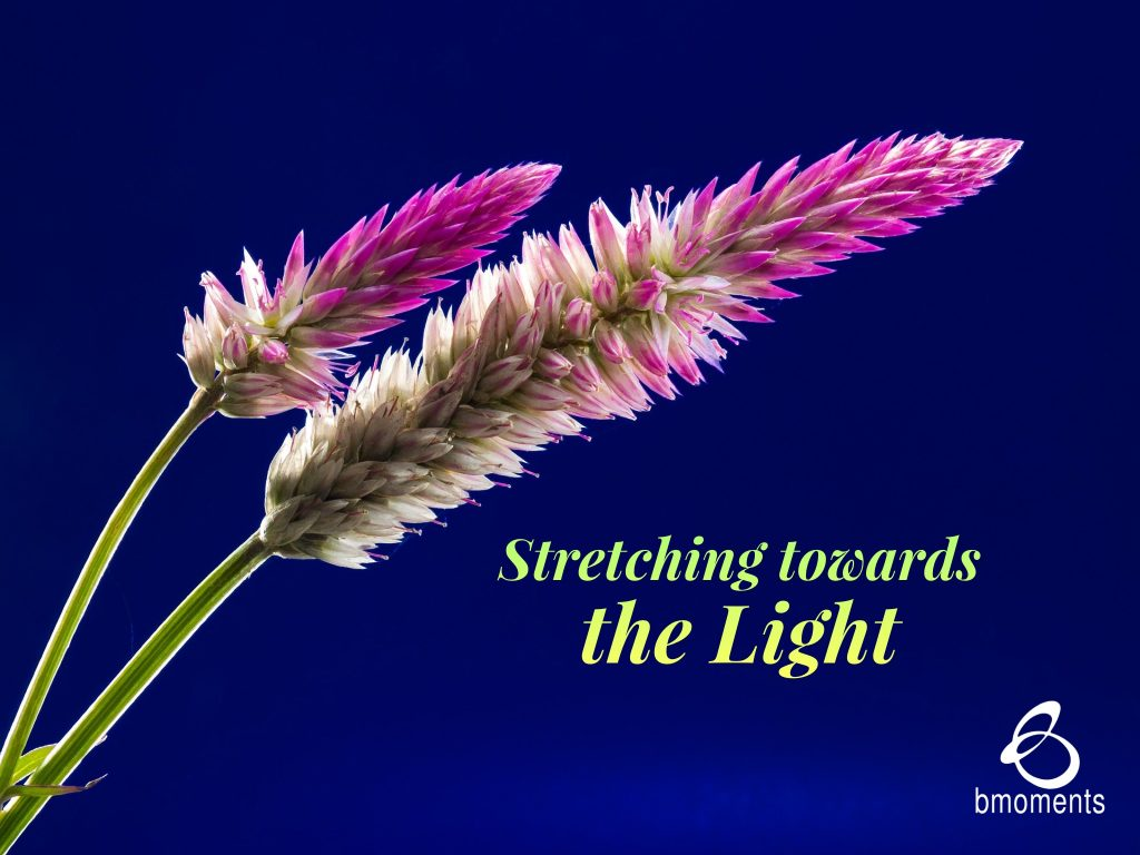 Stretching towards the Light