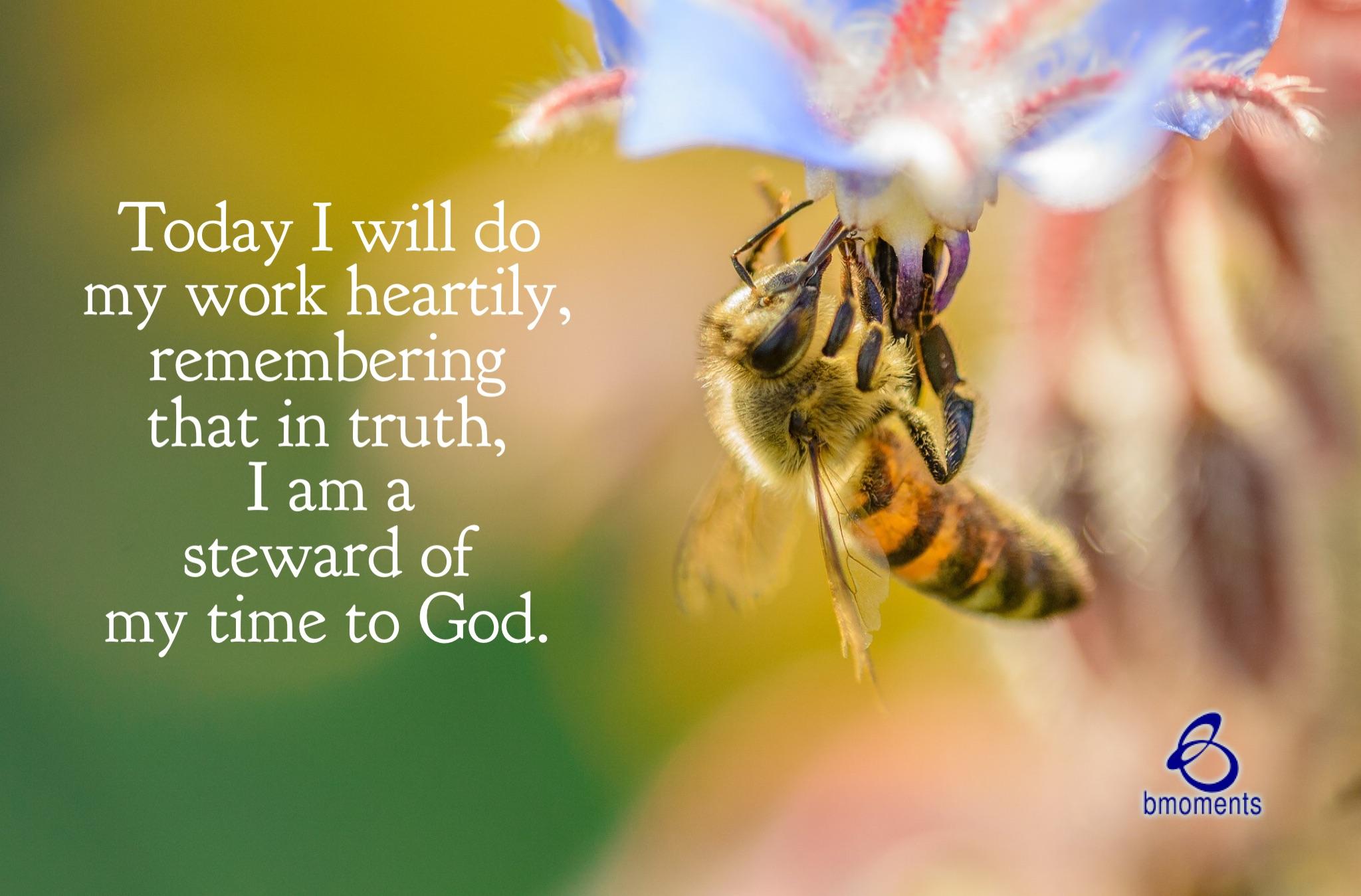 B Moments, Stewardship