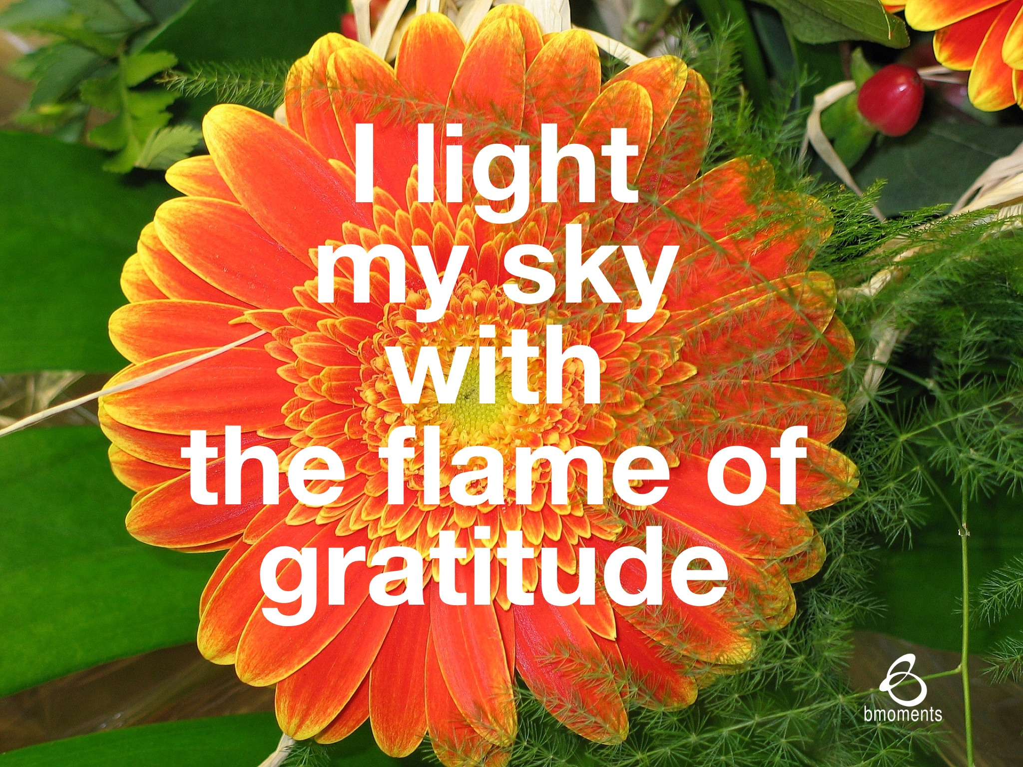 gratitude, bmoments
