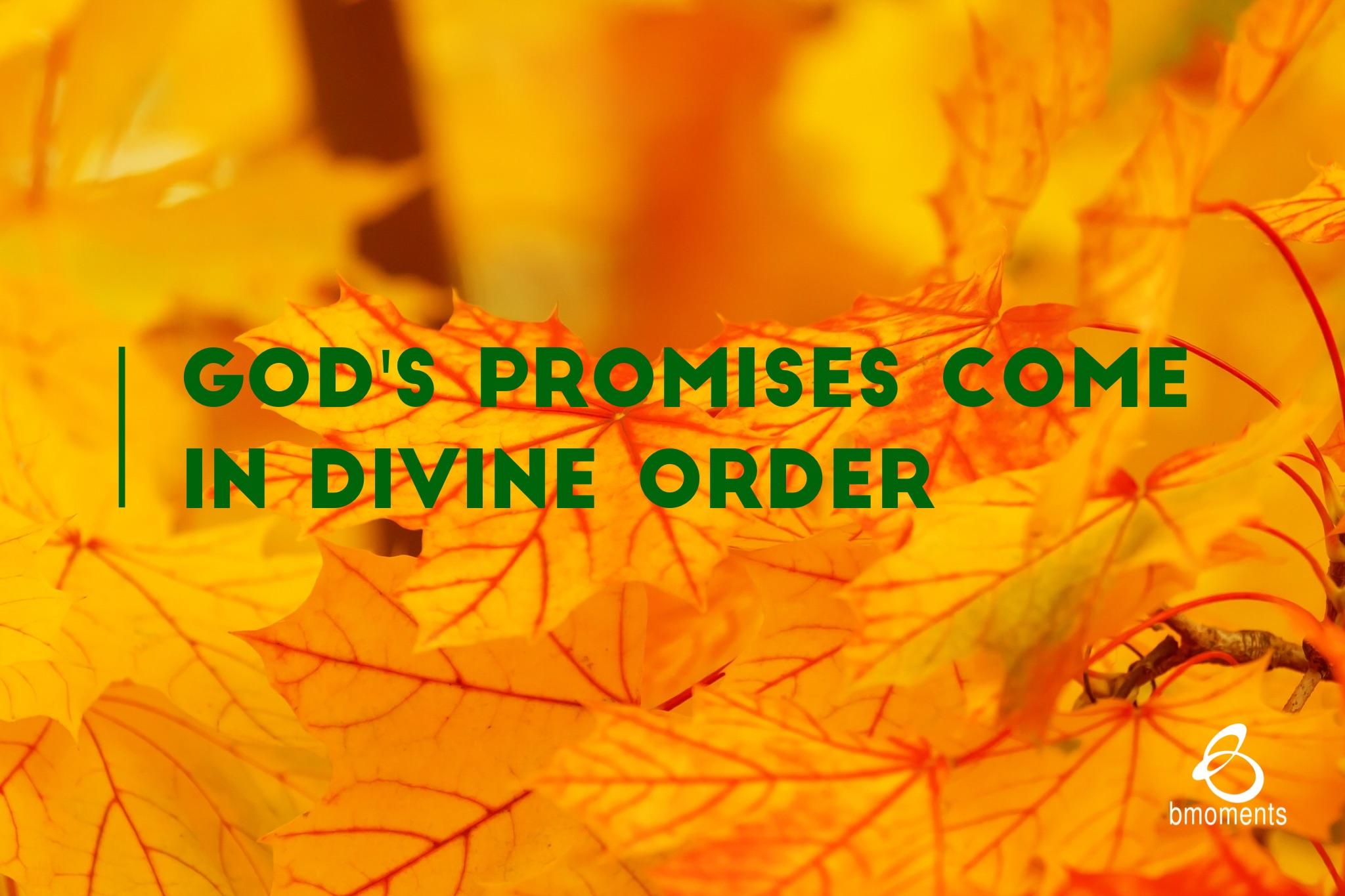 B Moments, Divine Order