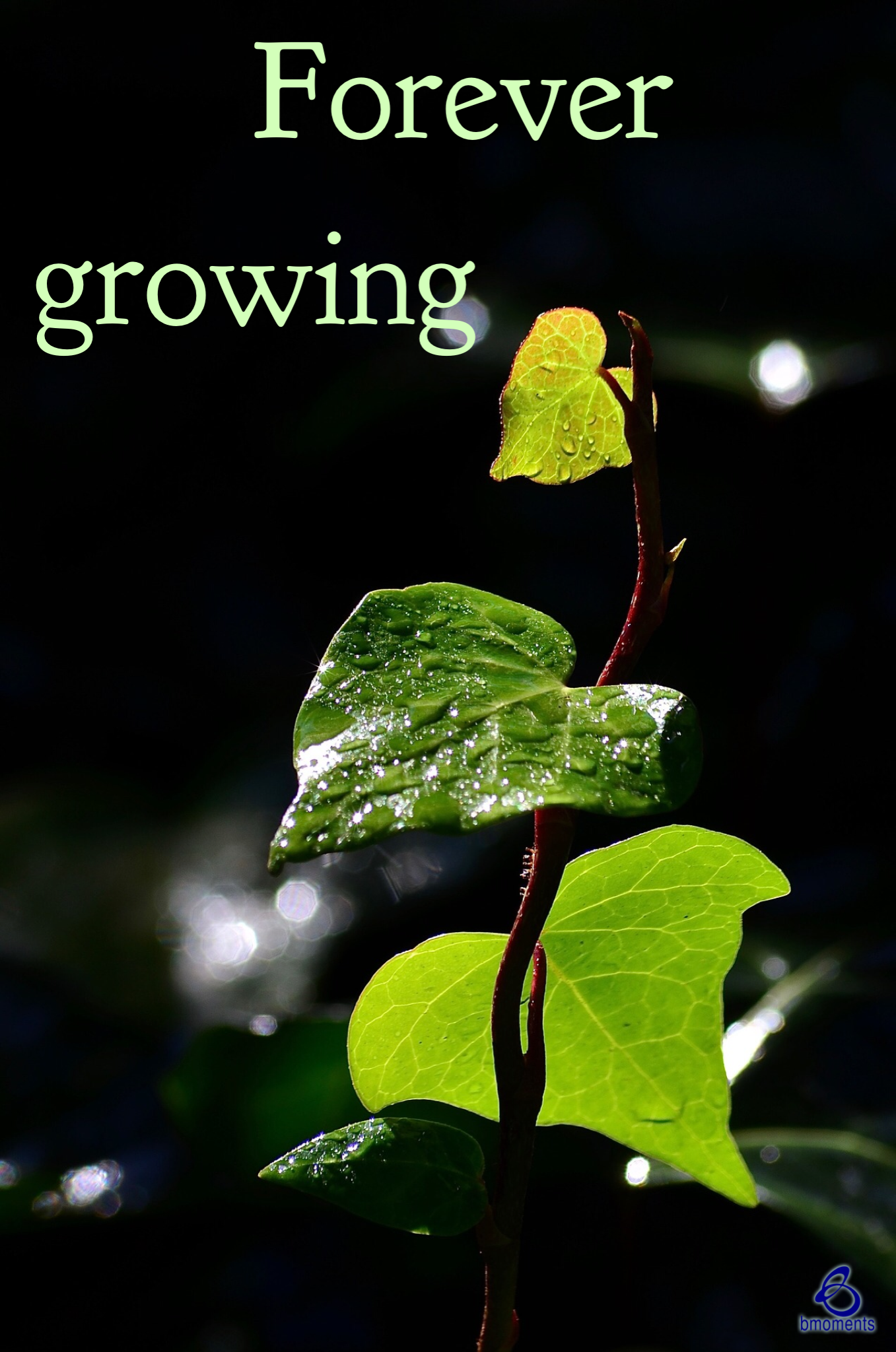 God Wants to Acknowledge Your Spiritual Growth