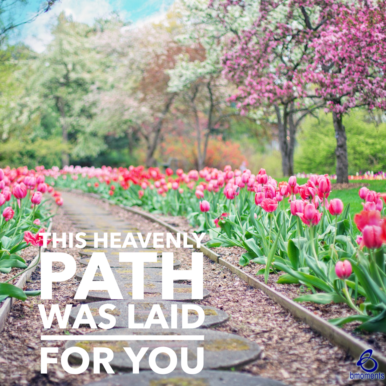 A Heavenly Path Paved Just for You