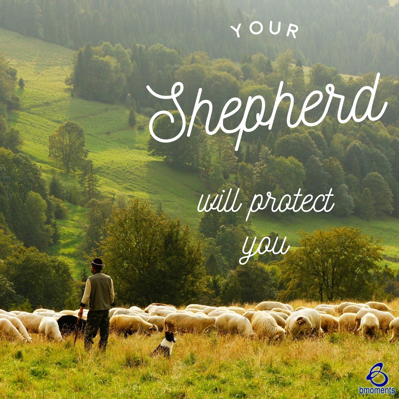 Your Shepherd Will Protect You from Harm