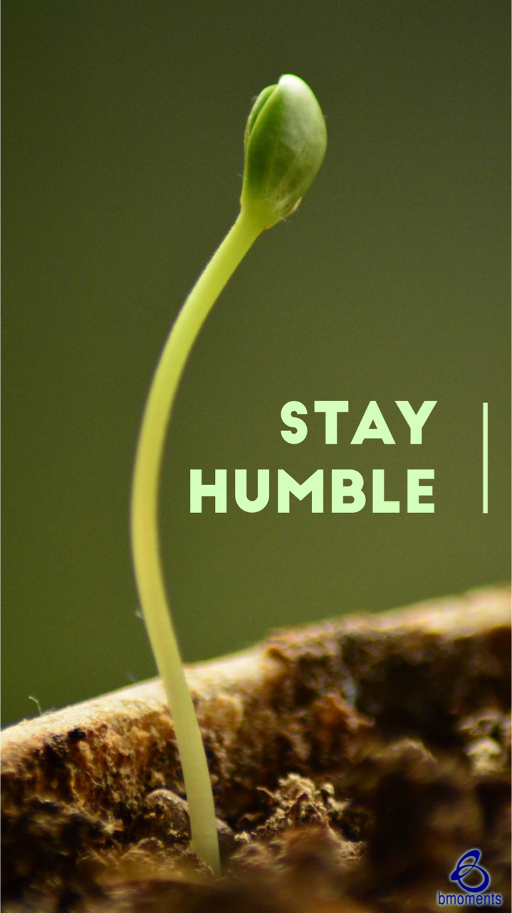 The Rewards of Humility Are Endless