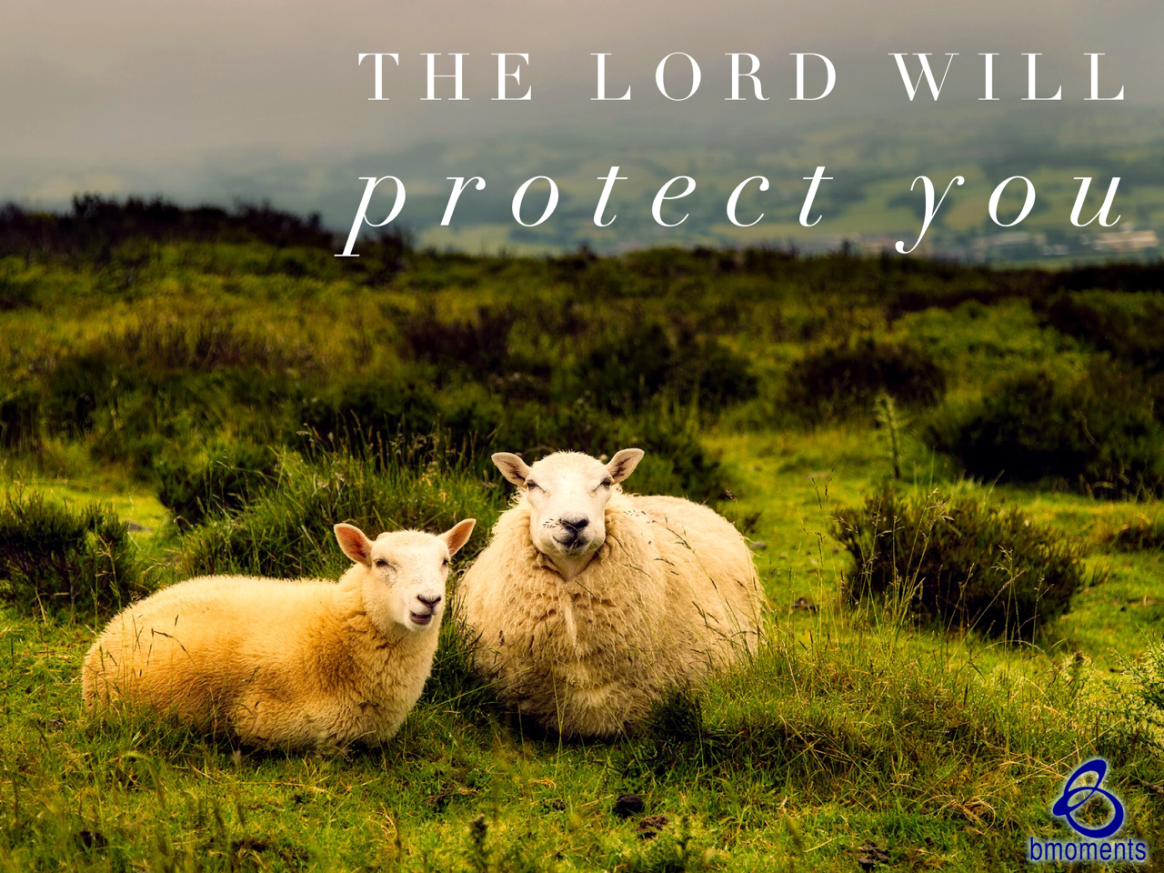 Know that Christ Is Your Shepherd