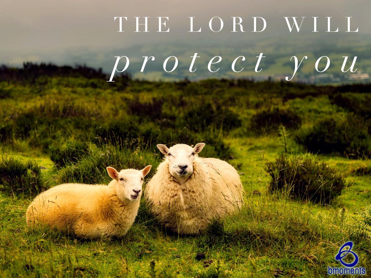 B Moments, shepherd