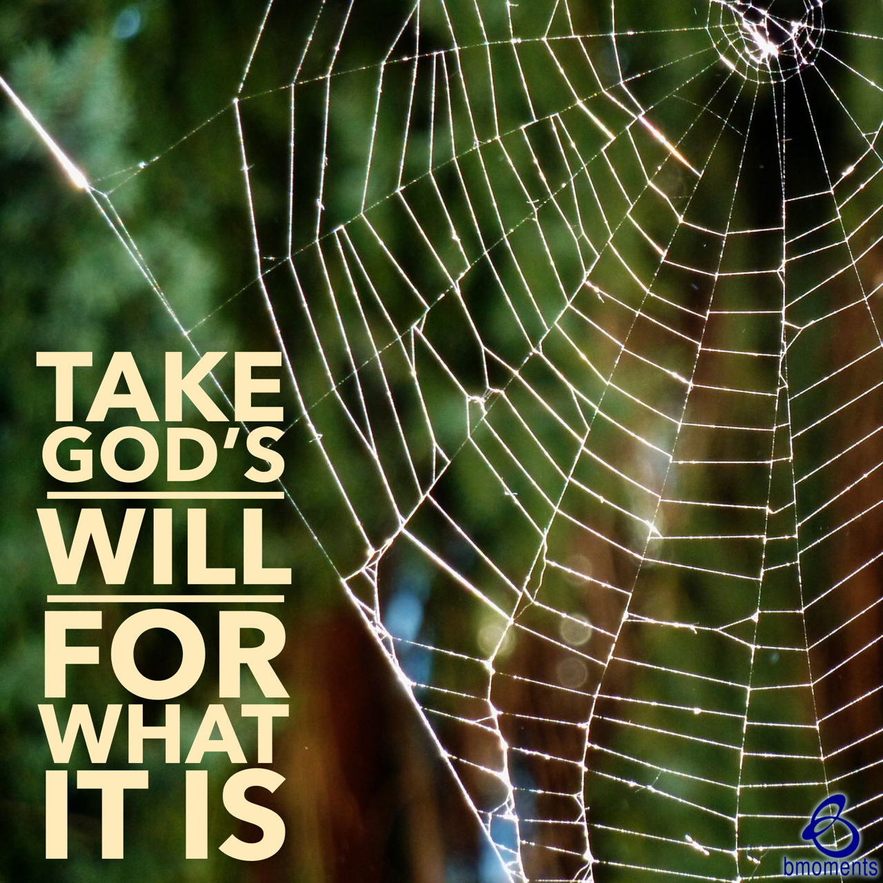 Avoid Putting Your Own Spin on God's Will