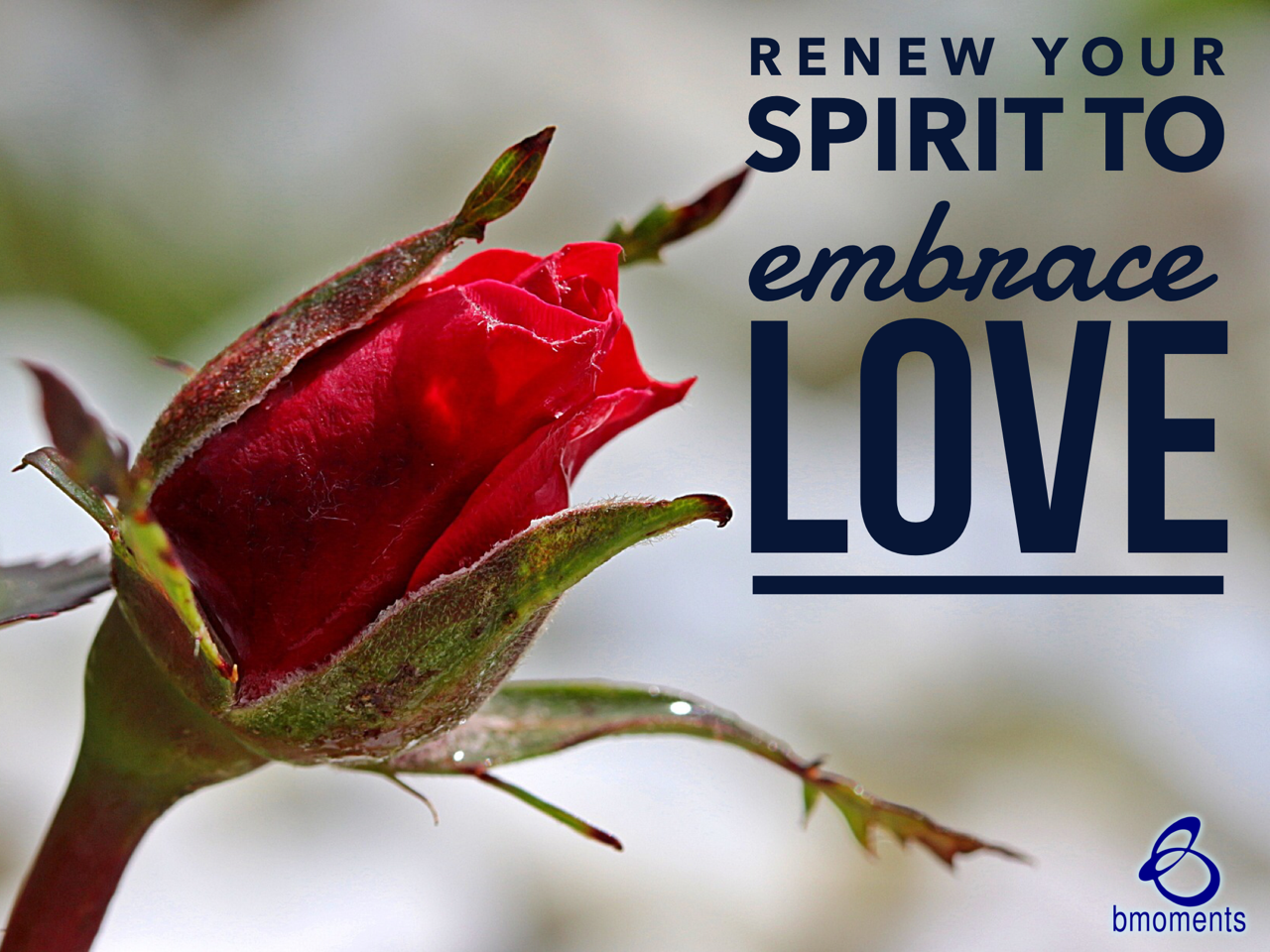 Renew Your Spirit to Love and Be Loved