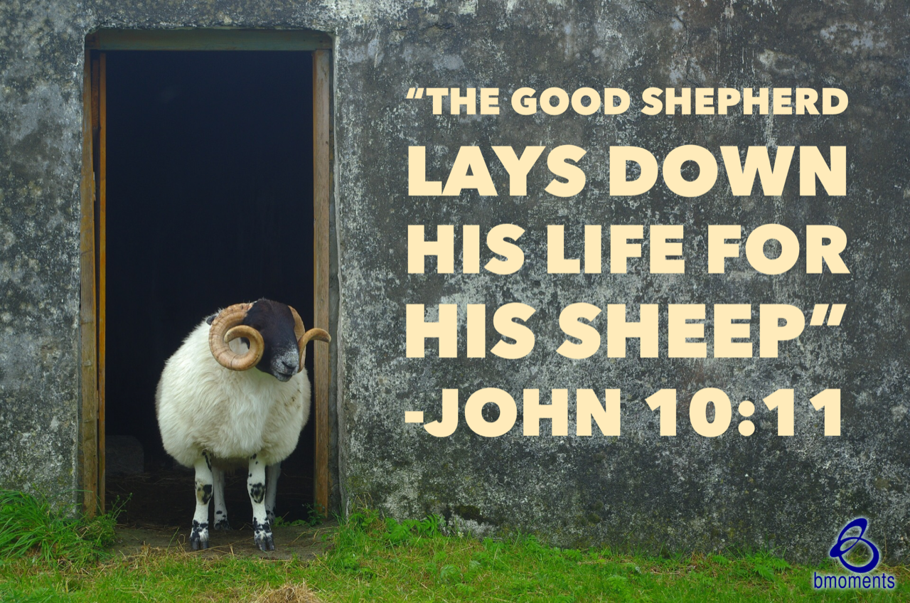 B Moments, good shepherd