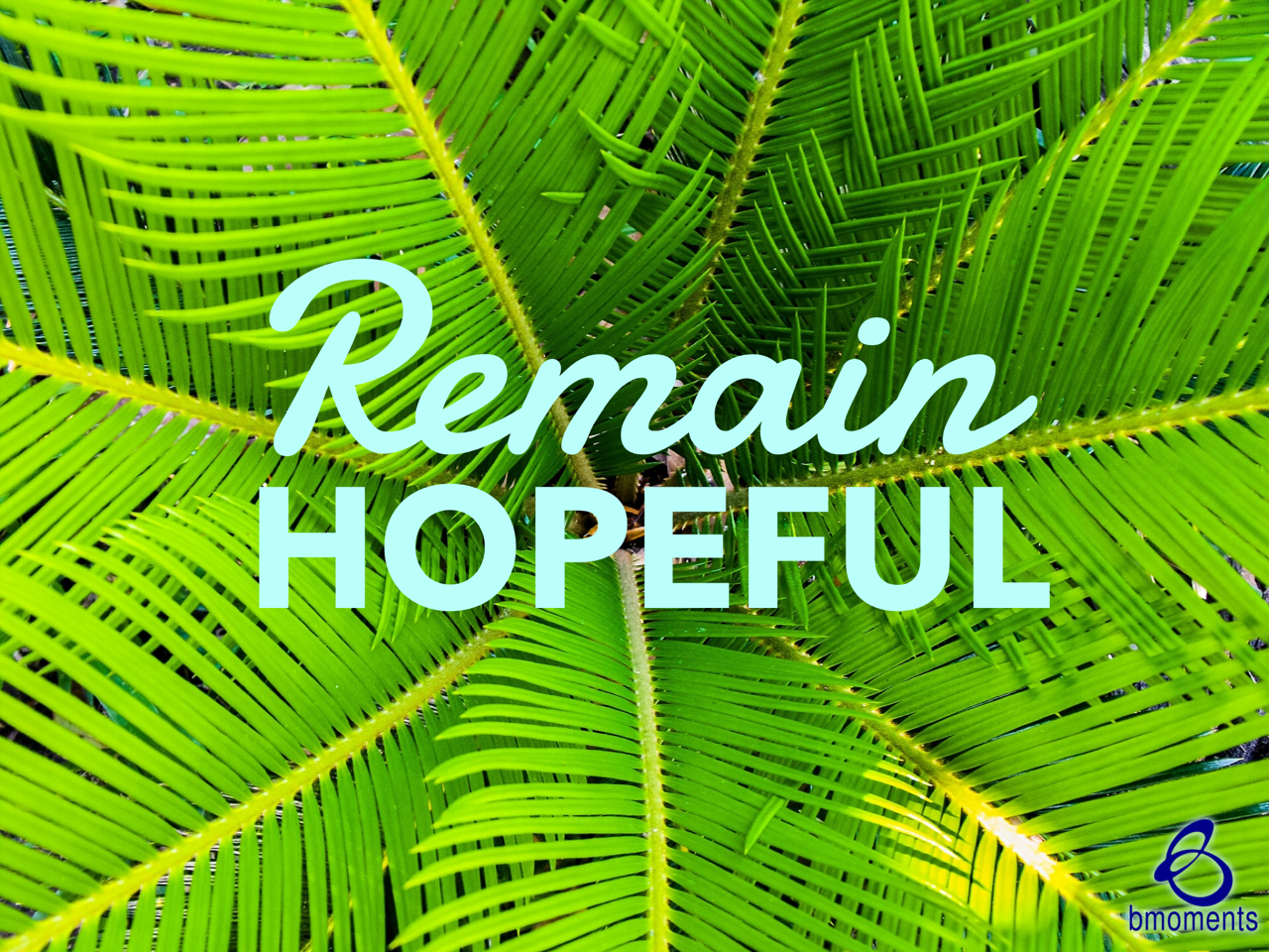 This Palm Sunday, Remain Hopeful about Your Future