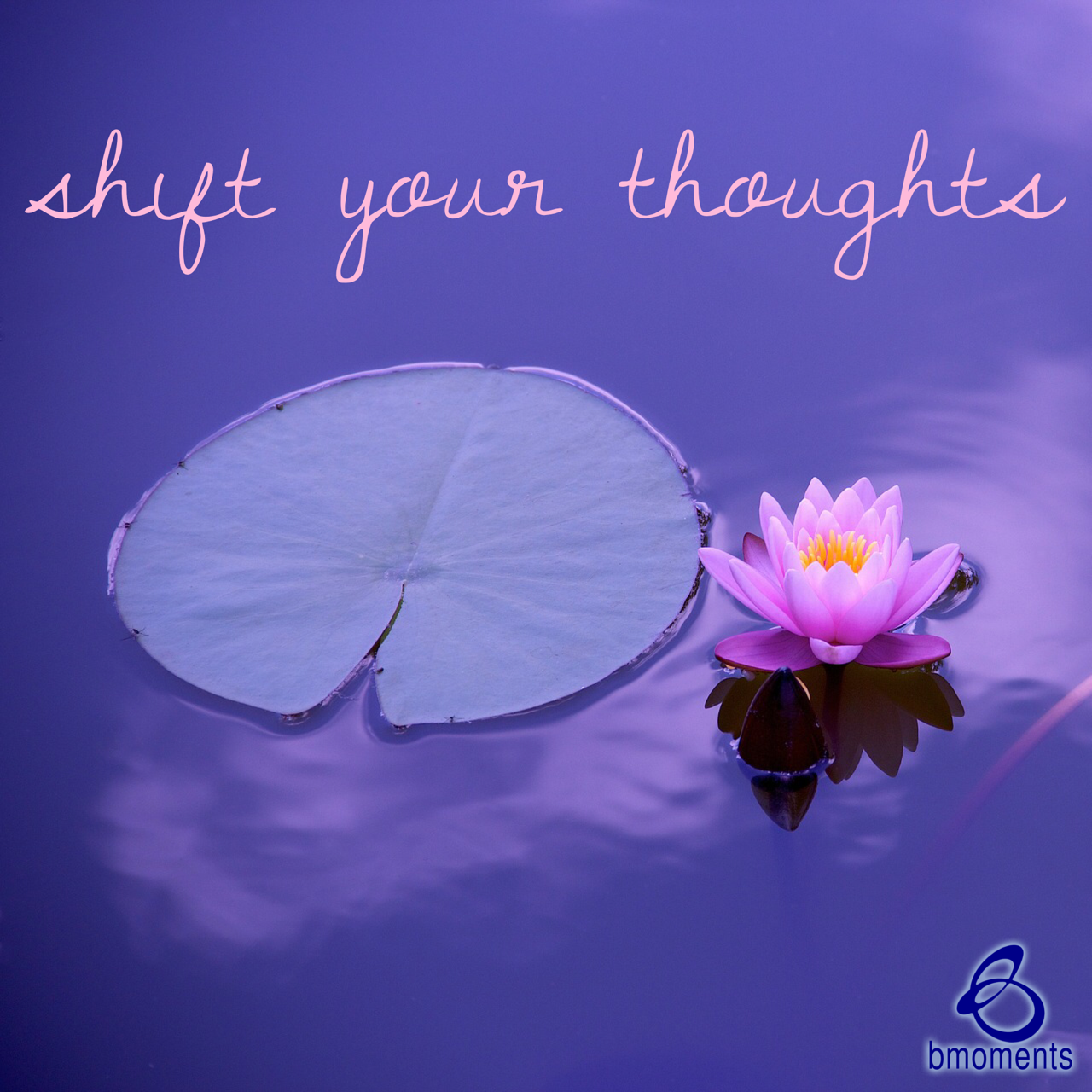 Consciously Shift Your Thoughts and Words