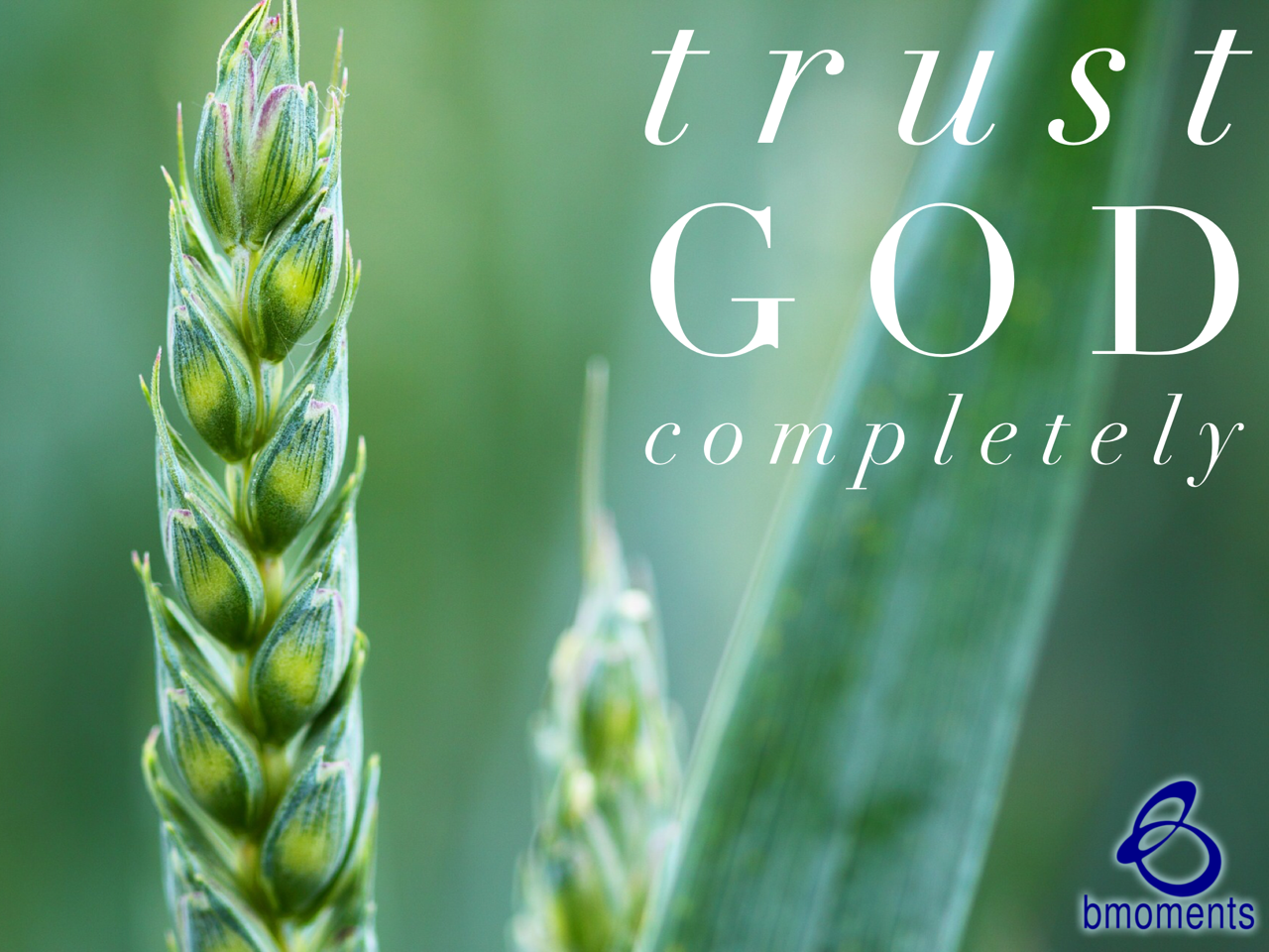 Here's How God Reacts When You Trust Him