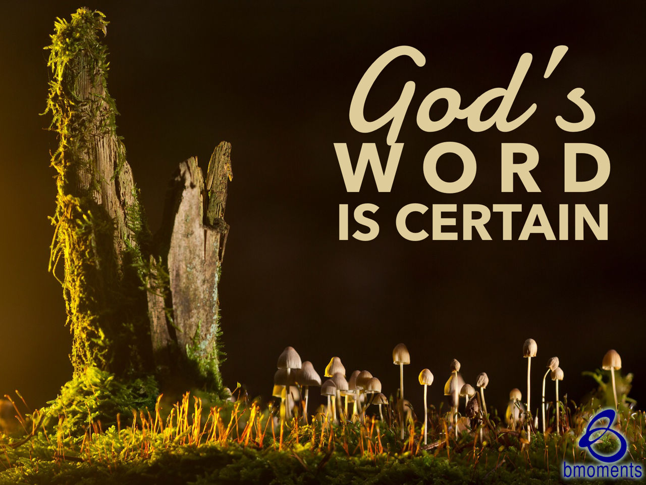 In Uncertain Times, Turn to God's Word