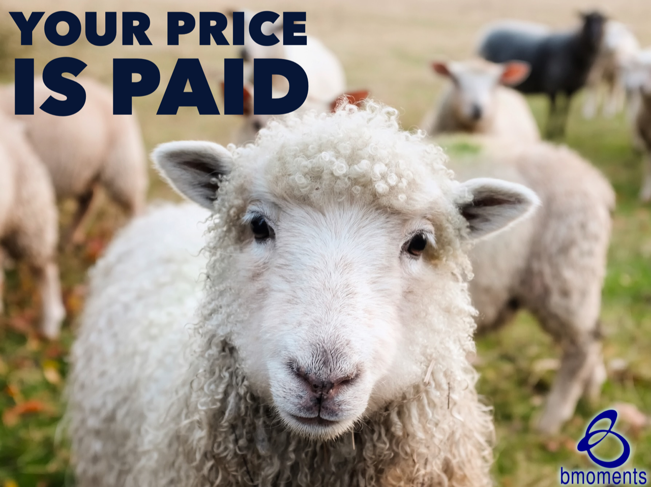 Don't Be Preoccupied: Your Price Is Already Paid