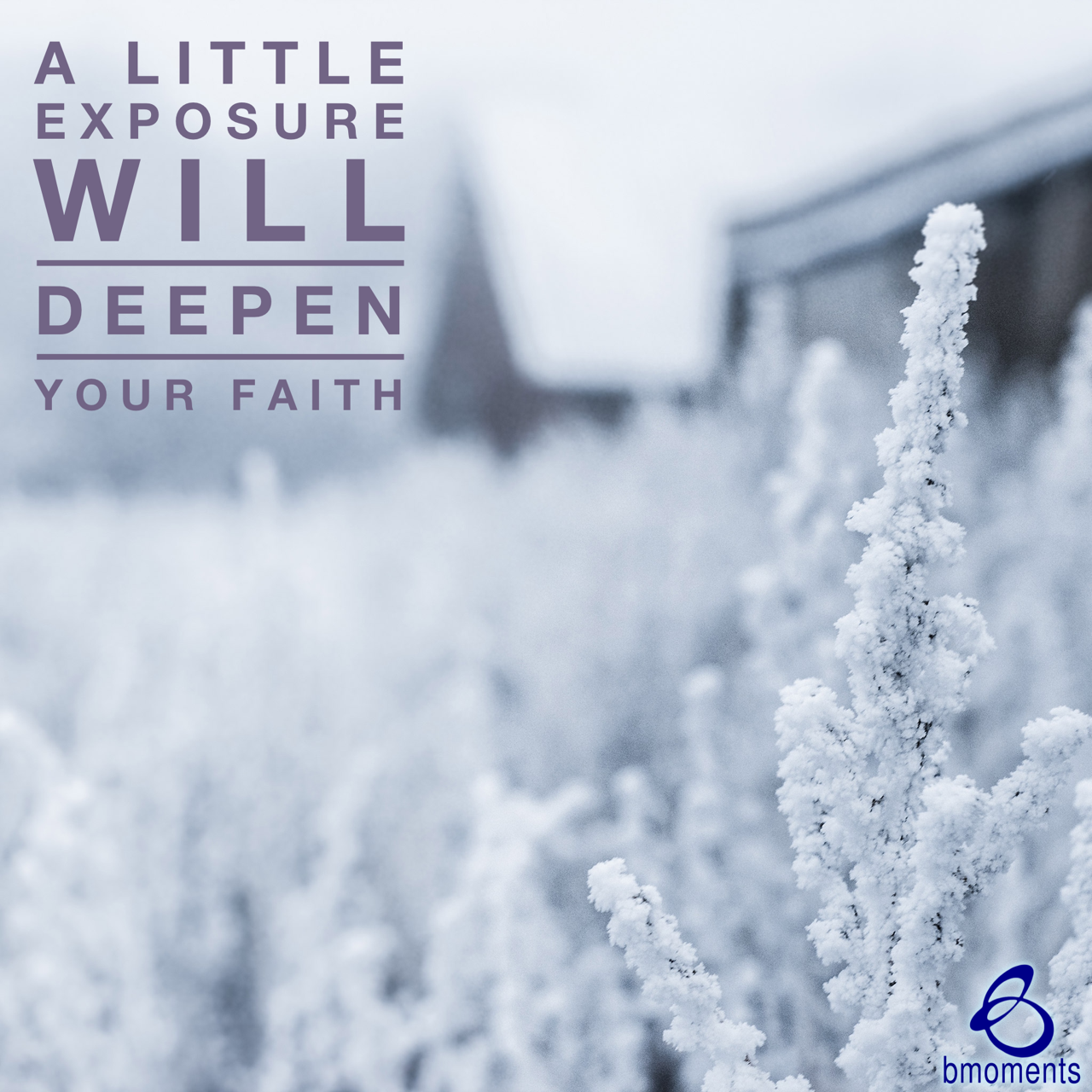 Let a Little Exposure Deepen Your Faith