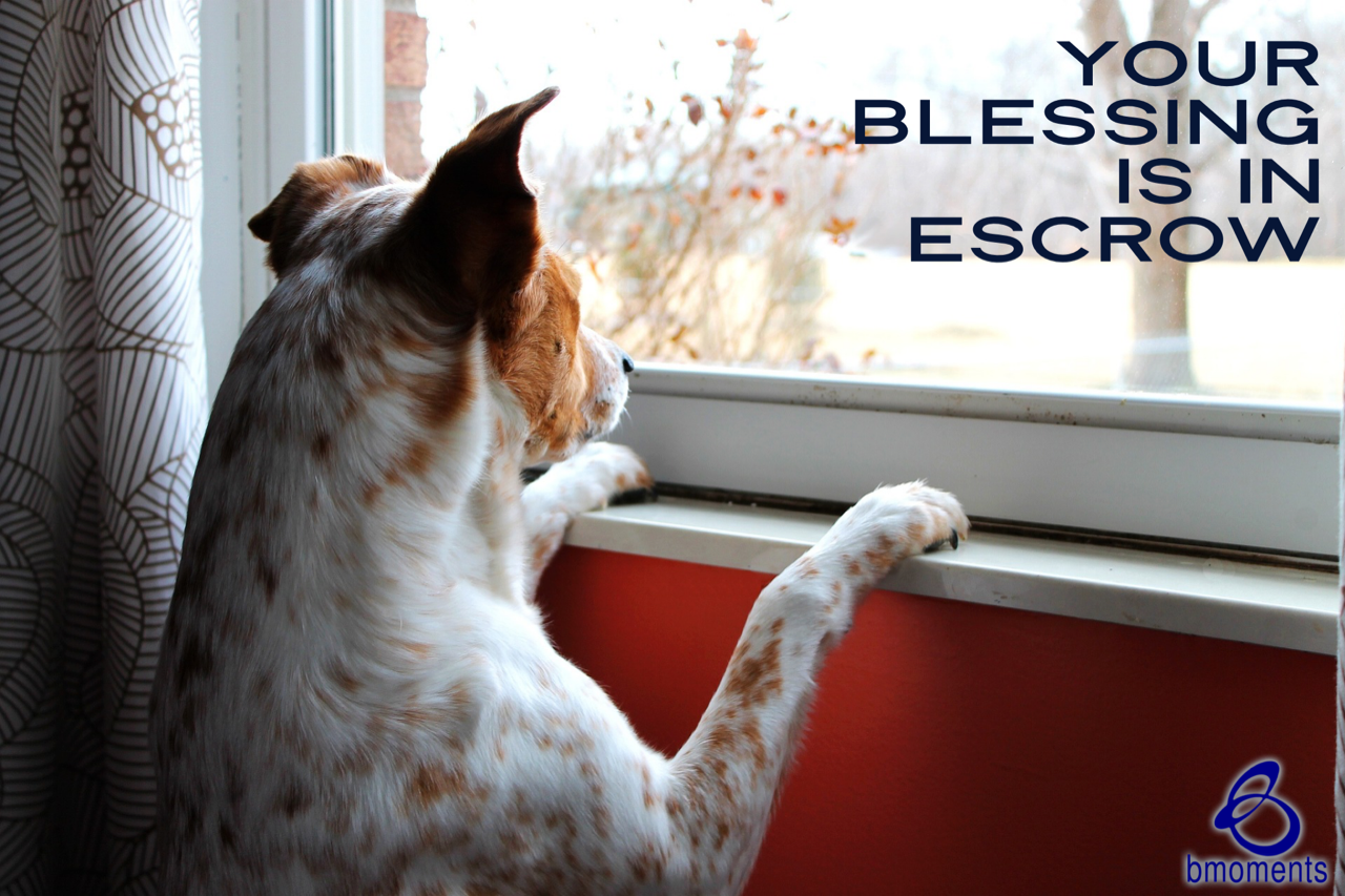 Your Blessings Are in Escrow