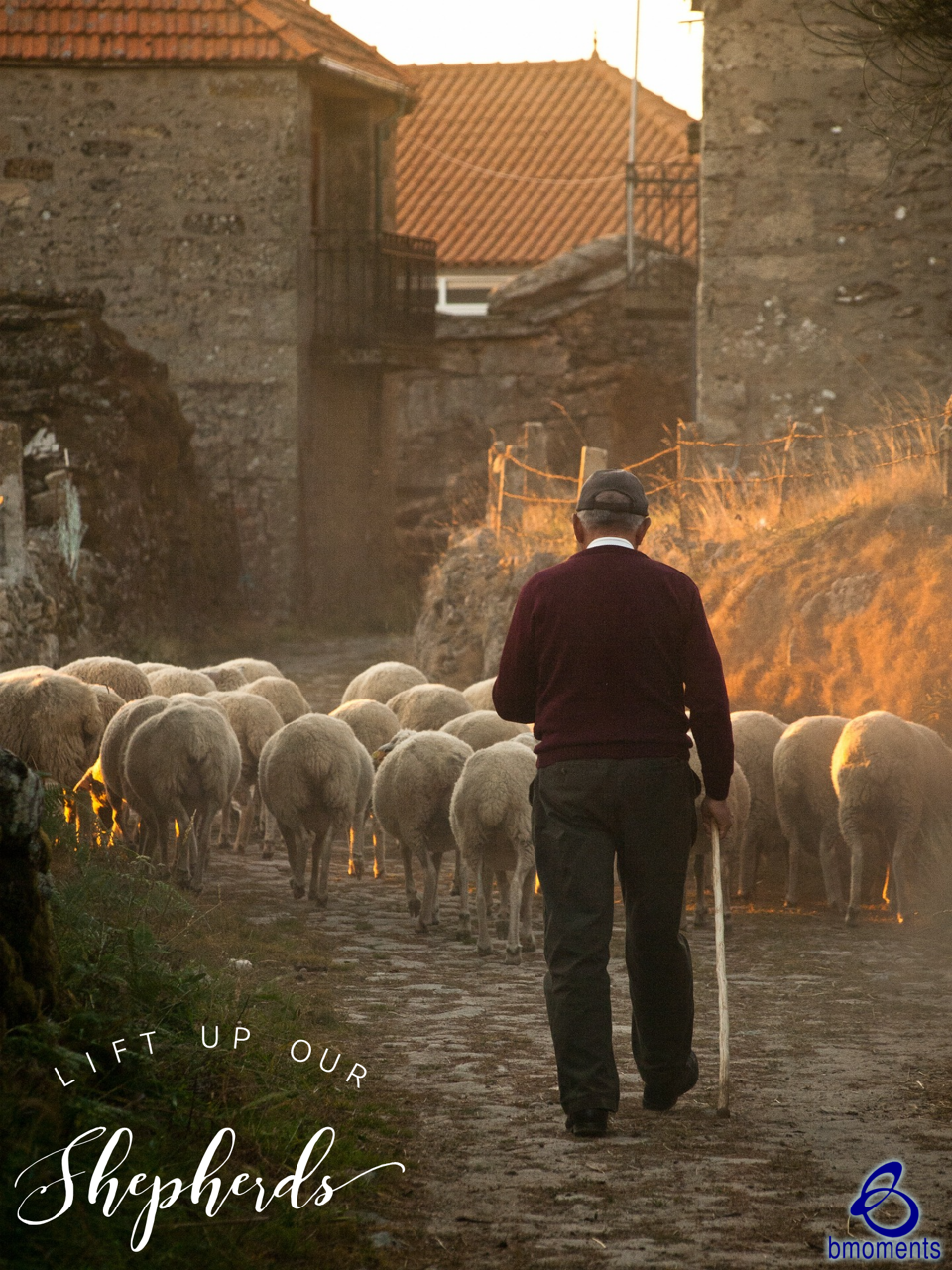 Lift Up Our Modern-Day Shepherds