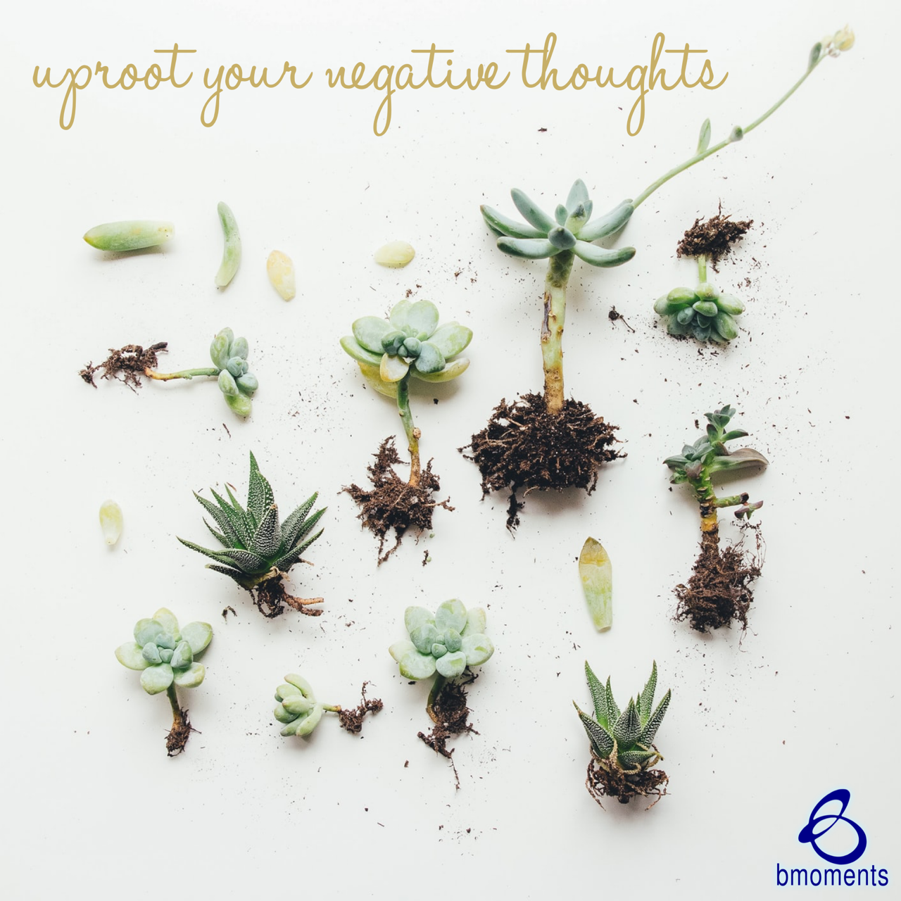 Uproot the Negative Thoughts Ingrained in Your Mindset