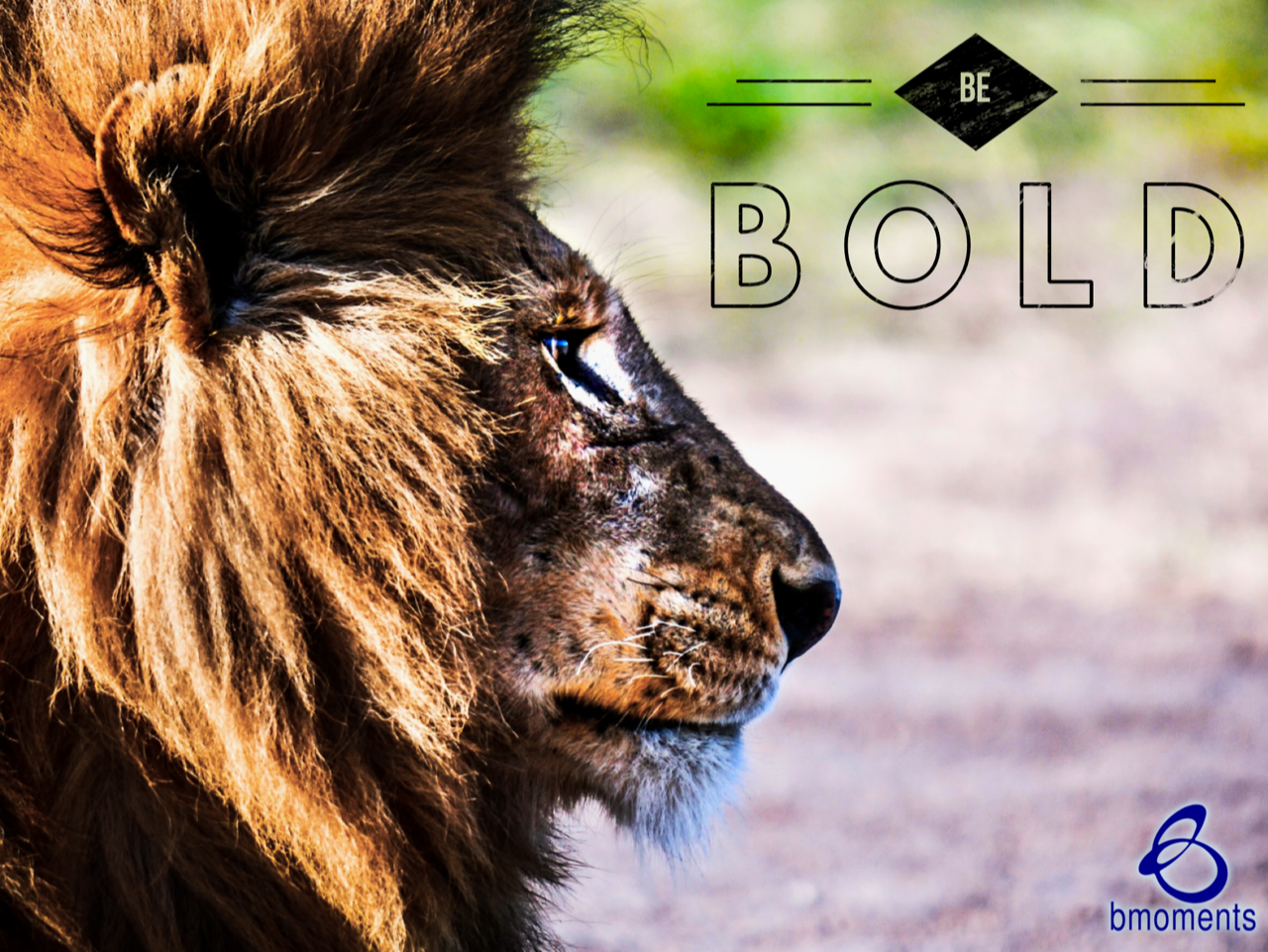 Be Bold: Challenge the Status Quo
