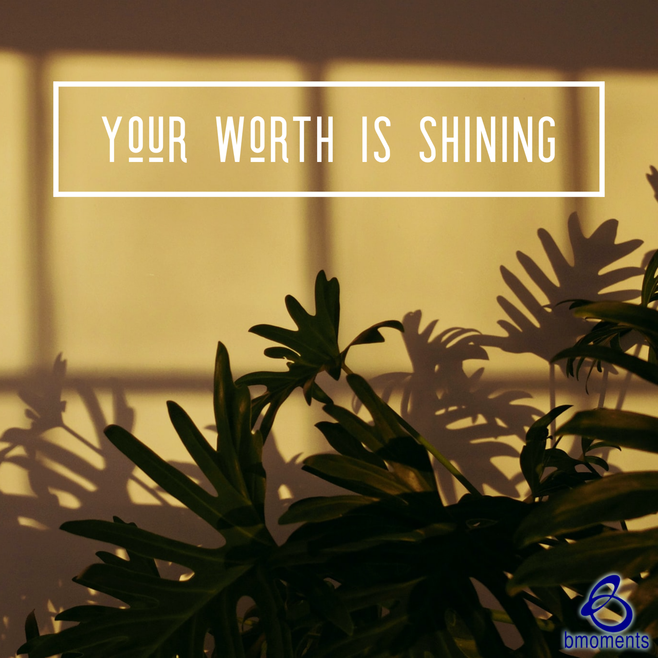 Even in the Shadows, Your Worth Shines